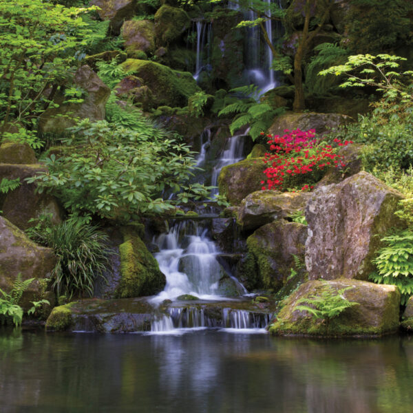 Explore The Beauty Of Portland's Japanese Garden