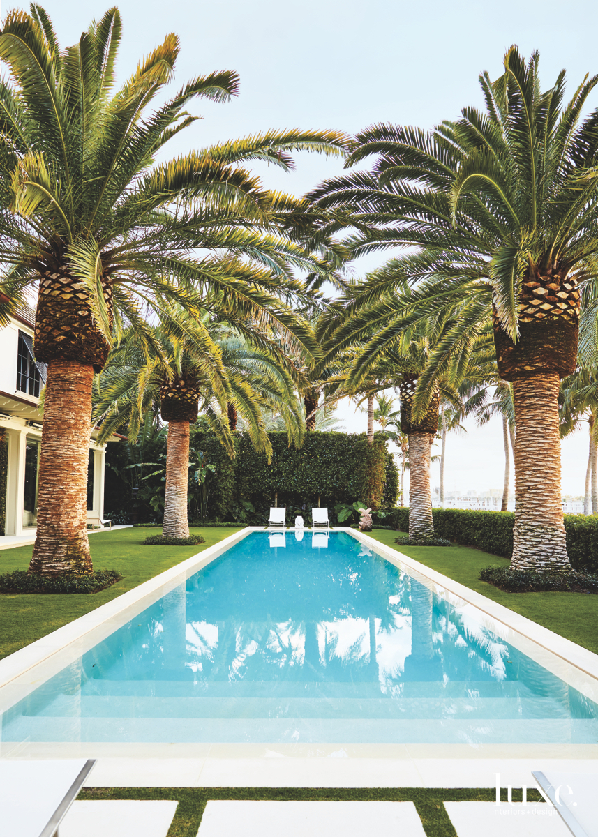 contemporary outdoor pool landscaping palm...