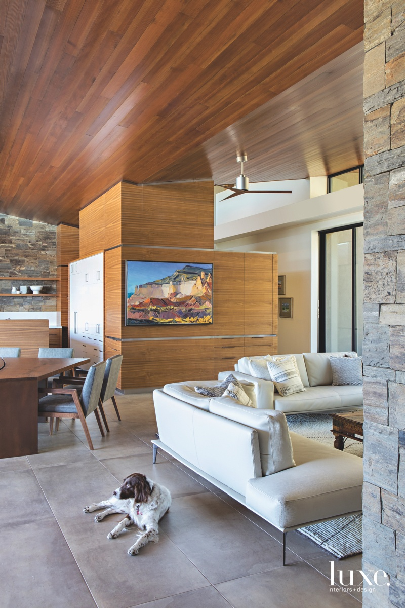 modern living area walnut cabinetry...
