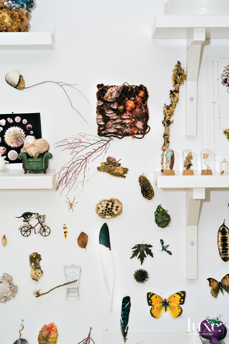 Nature findings and other collected items serve as inspiration on the walls of Gross' studio.