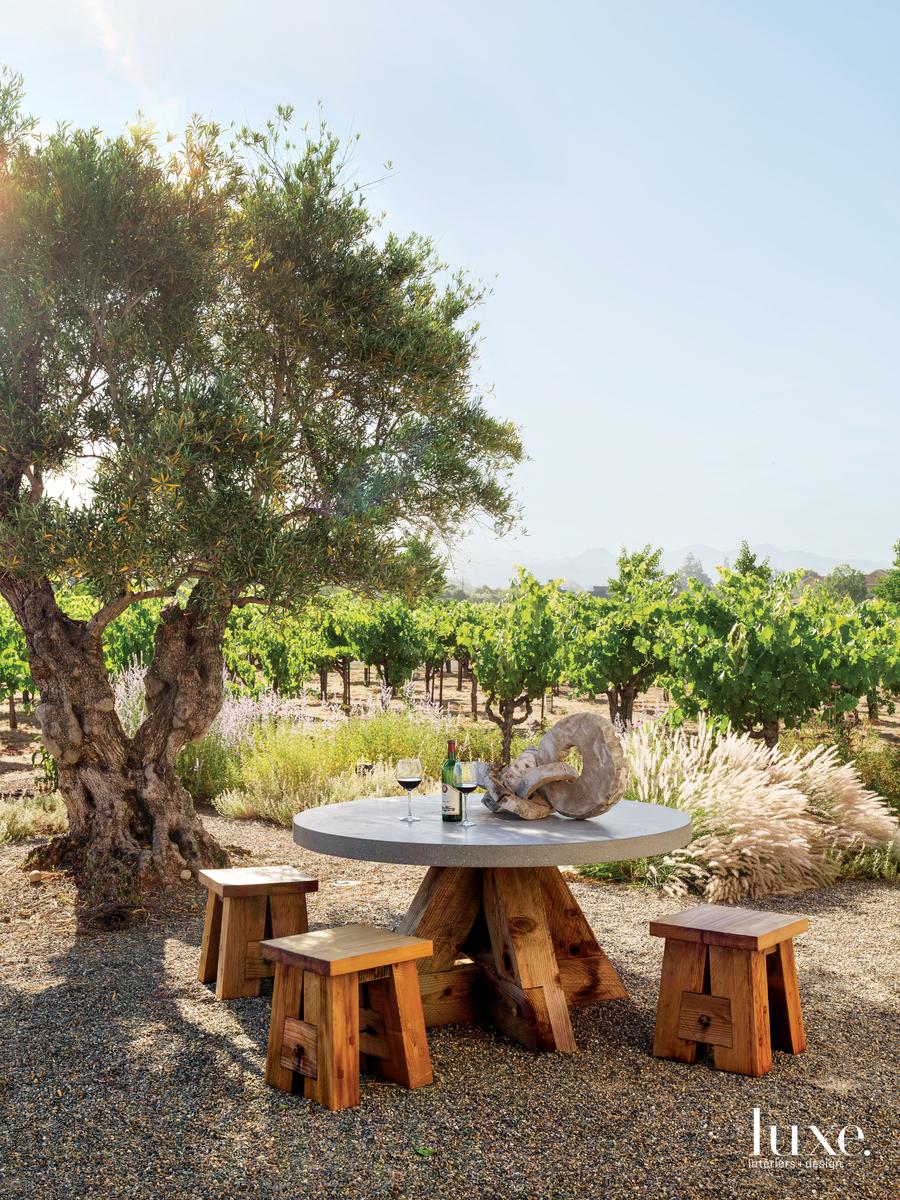 exterior landscape sitting area vineyard
