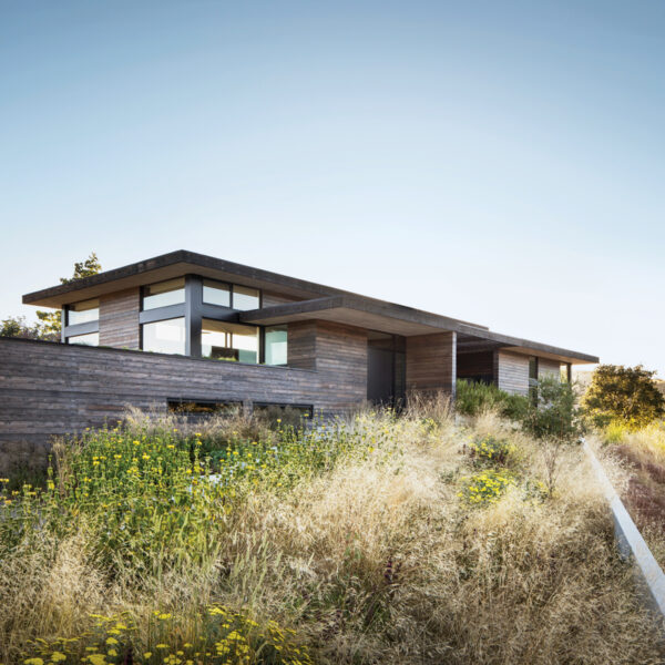 Sweeping Grasses Inform A Home's Organic Design