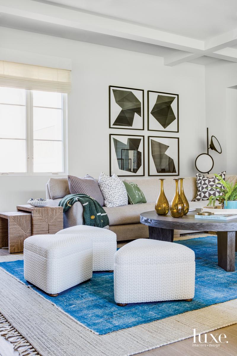 contemporary family room blue rug