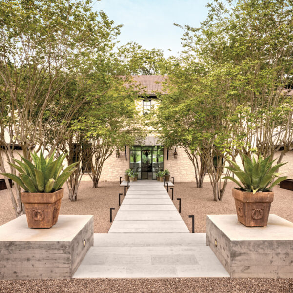 An Austin Home With Modern European Flair Shines