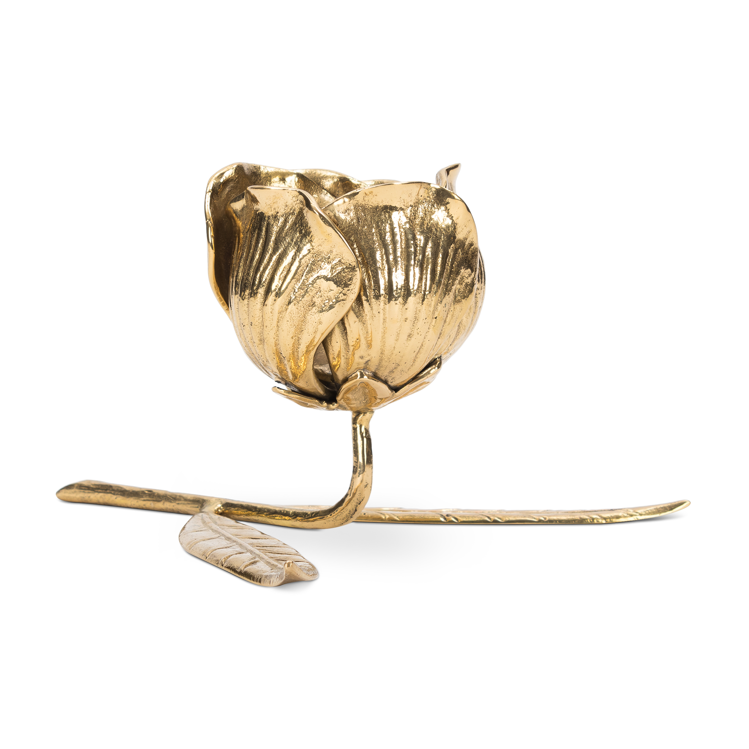 Brass Tulip Open ($45) / The Holiday