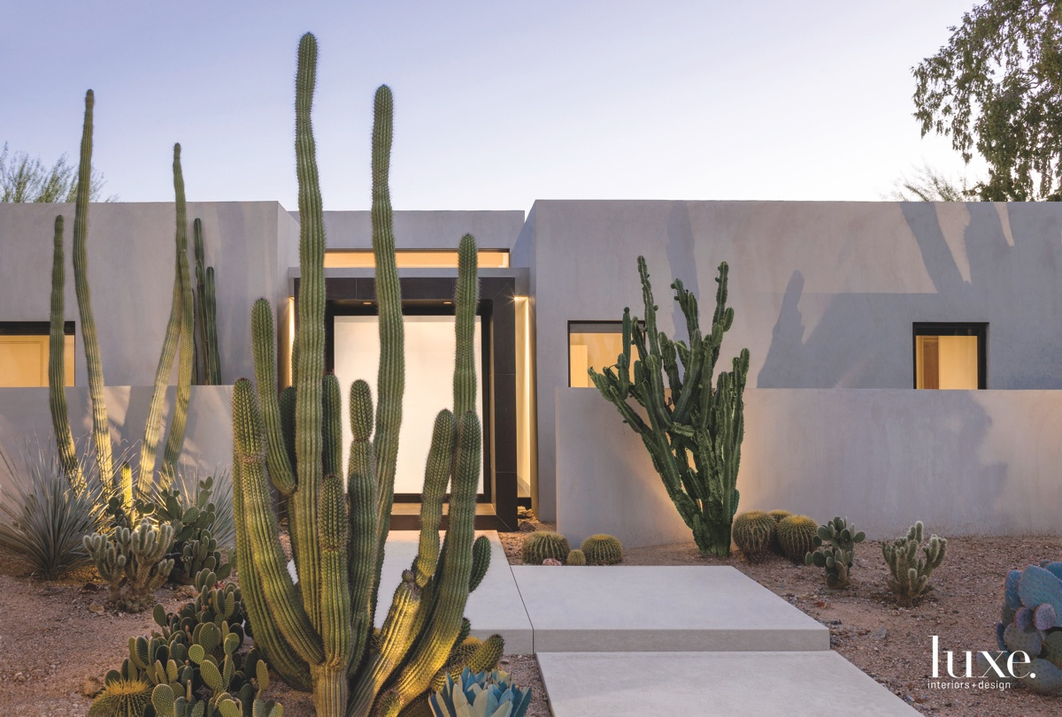 modern exterior entrance cactus