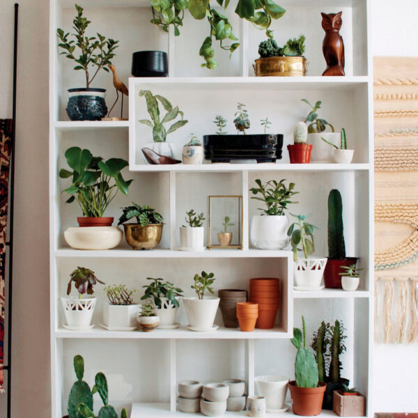 How Instagram Helped Make This Curated Denver Shop