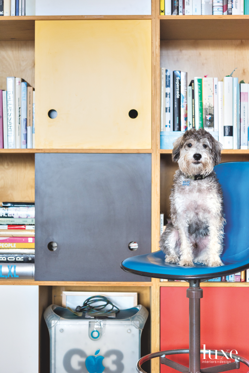 Kysar's dog Fritz, a frequent visitor to the studio, perches on a chair.