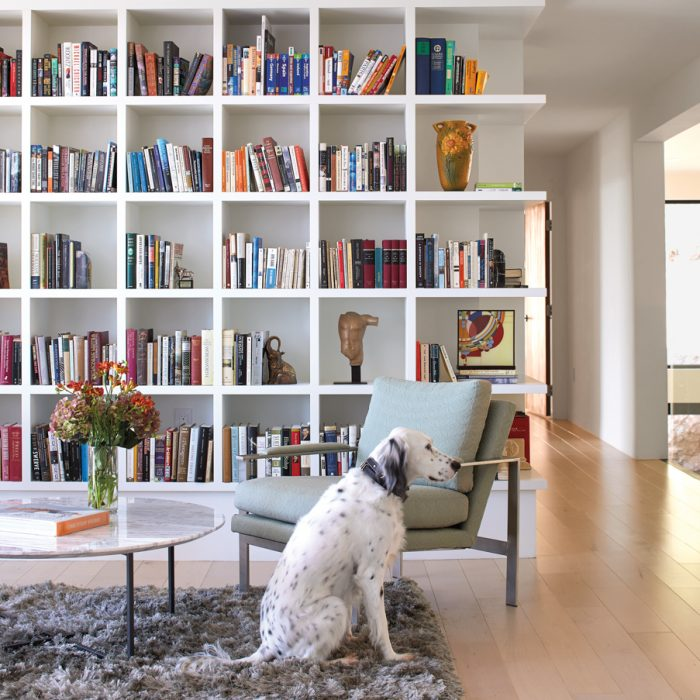 15 Spaces That Showcase Pet-Friendly Yet Stylish Design