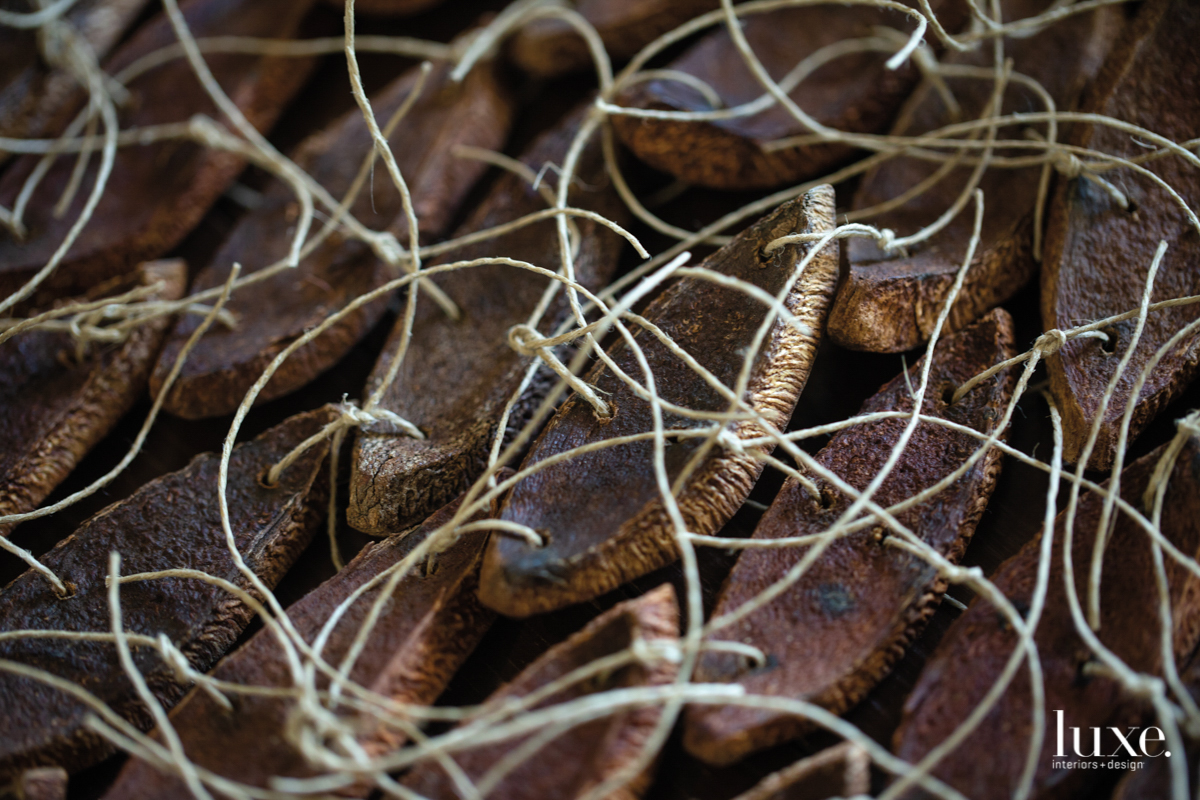 mahobany pods close up and tied together