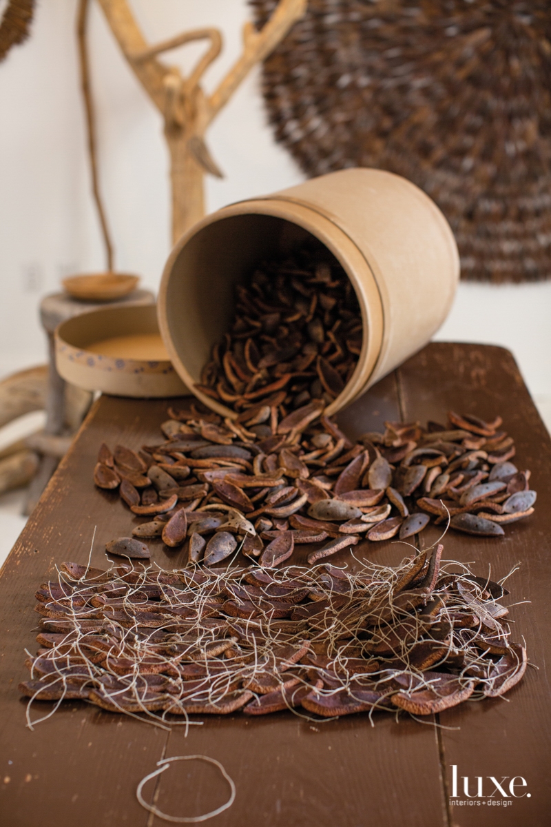 dried mahogany pods in a pot and tied together