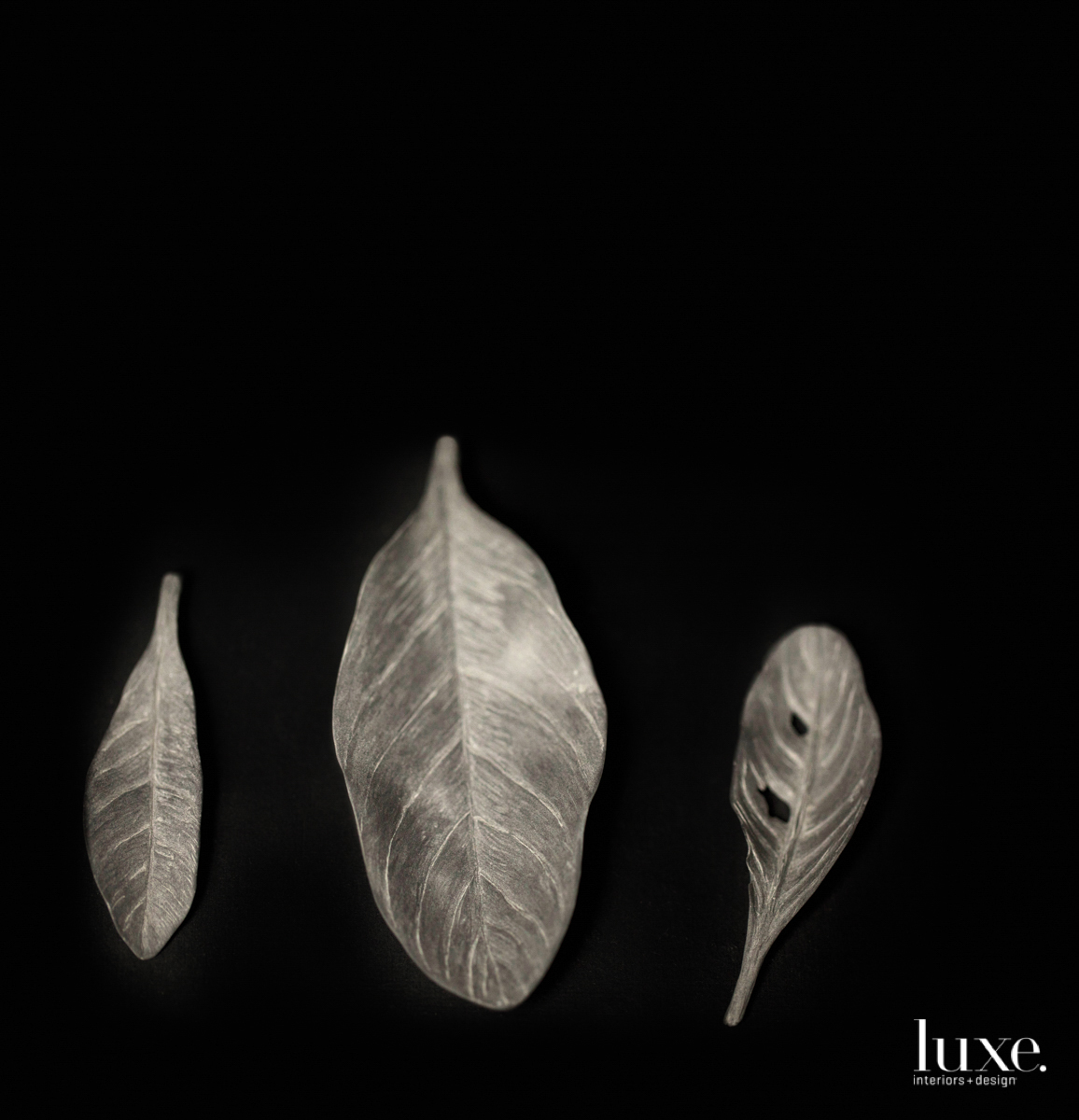 three realistic sculptures of leaves on a pure black background