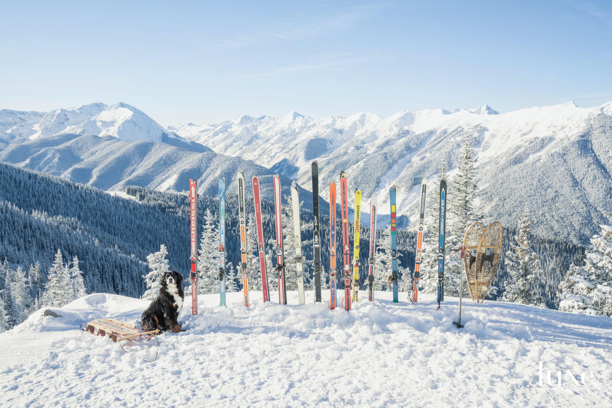 Mountain scene with skis