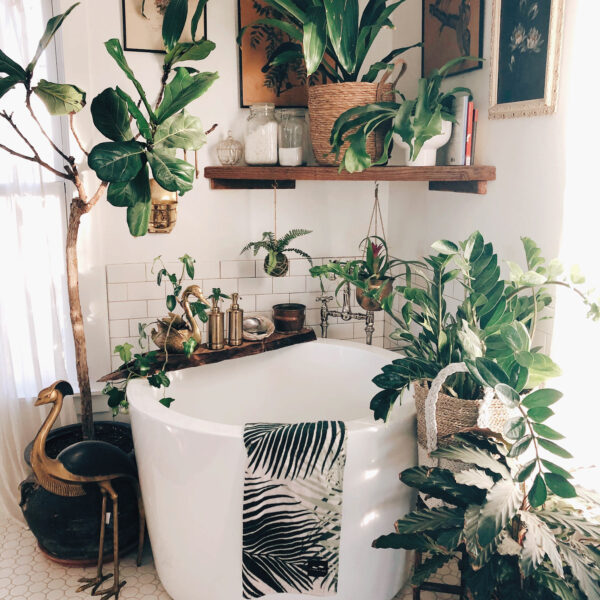 Calling All Thrifters And Plant Lovers: Vine And Vintage's Instagram Is For You