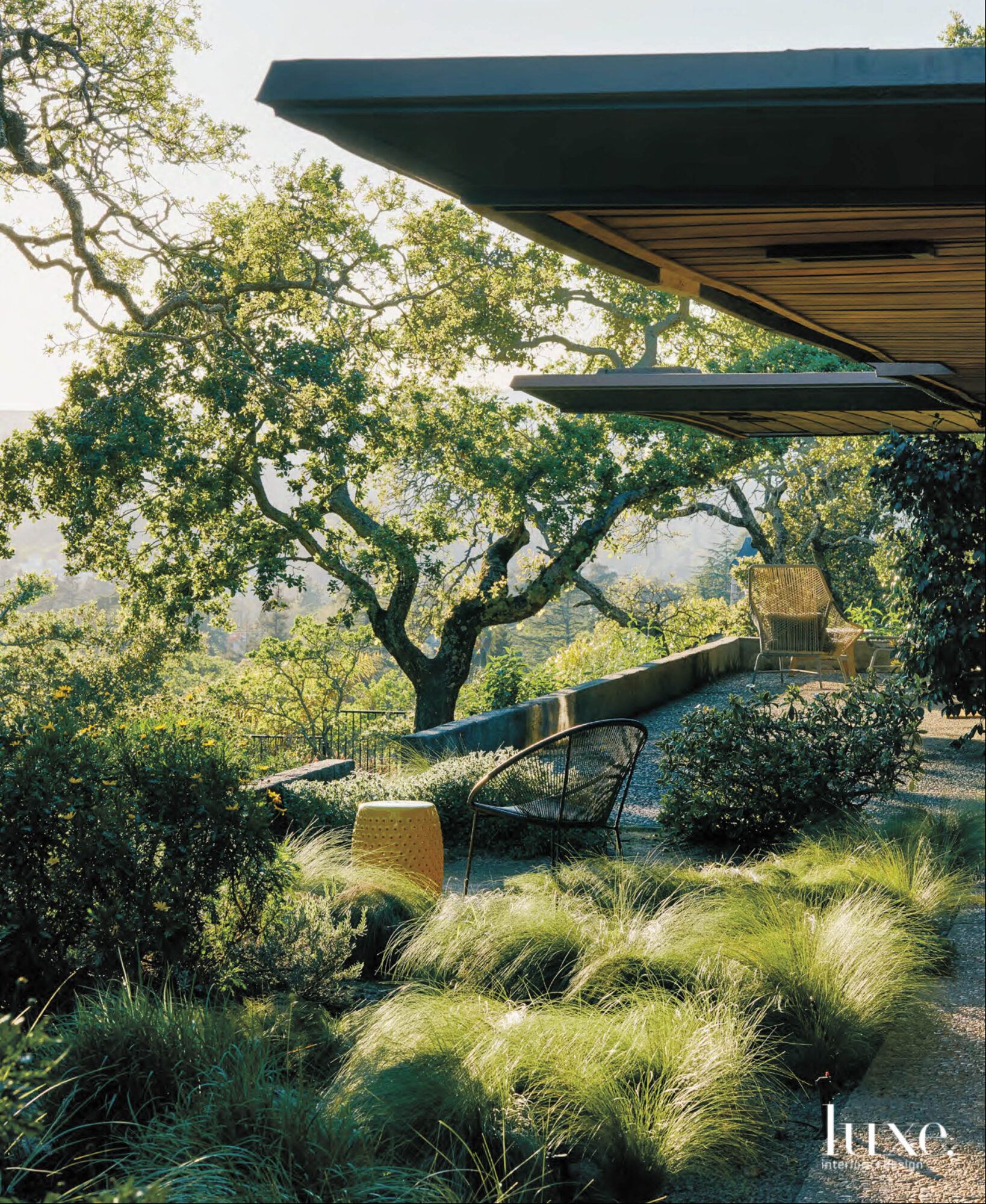 Outdoor space in the wine country