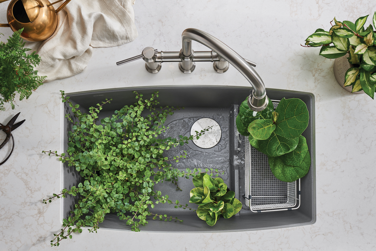 ariel view of sink with green plants in sink