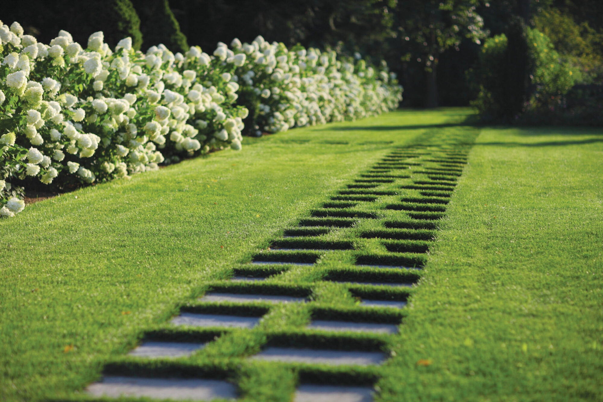 stone walkway in grass