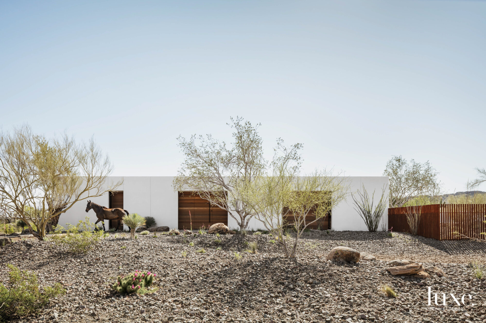 The outside of a modern, minimalist house in the Sonoran Desert.