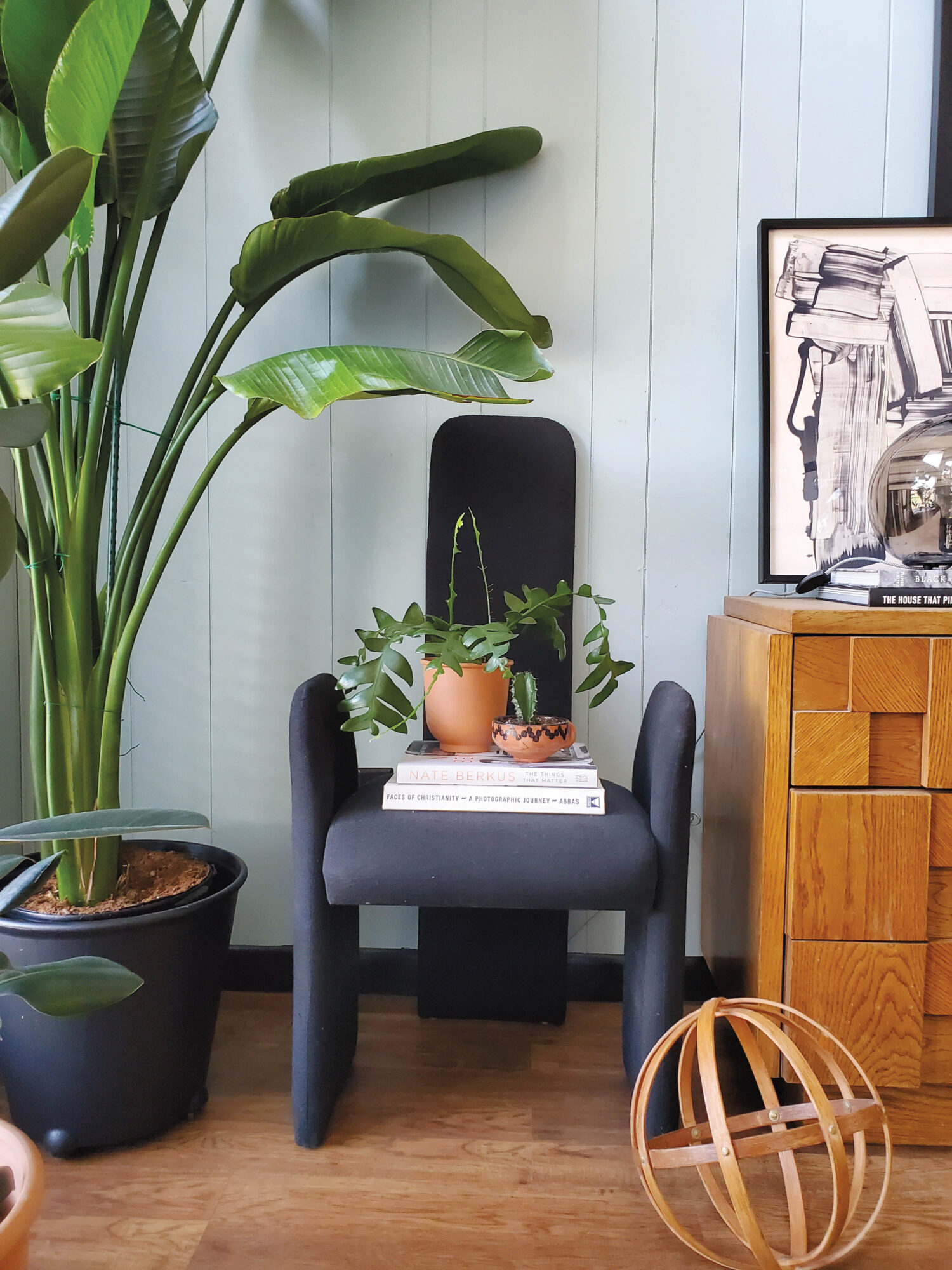 Light blue room with modern black armchair, wood chest and green plant