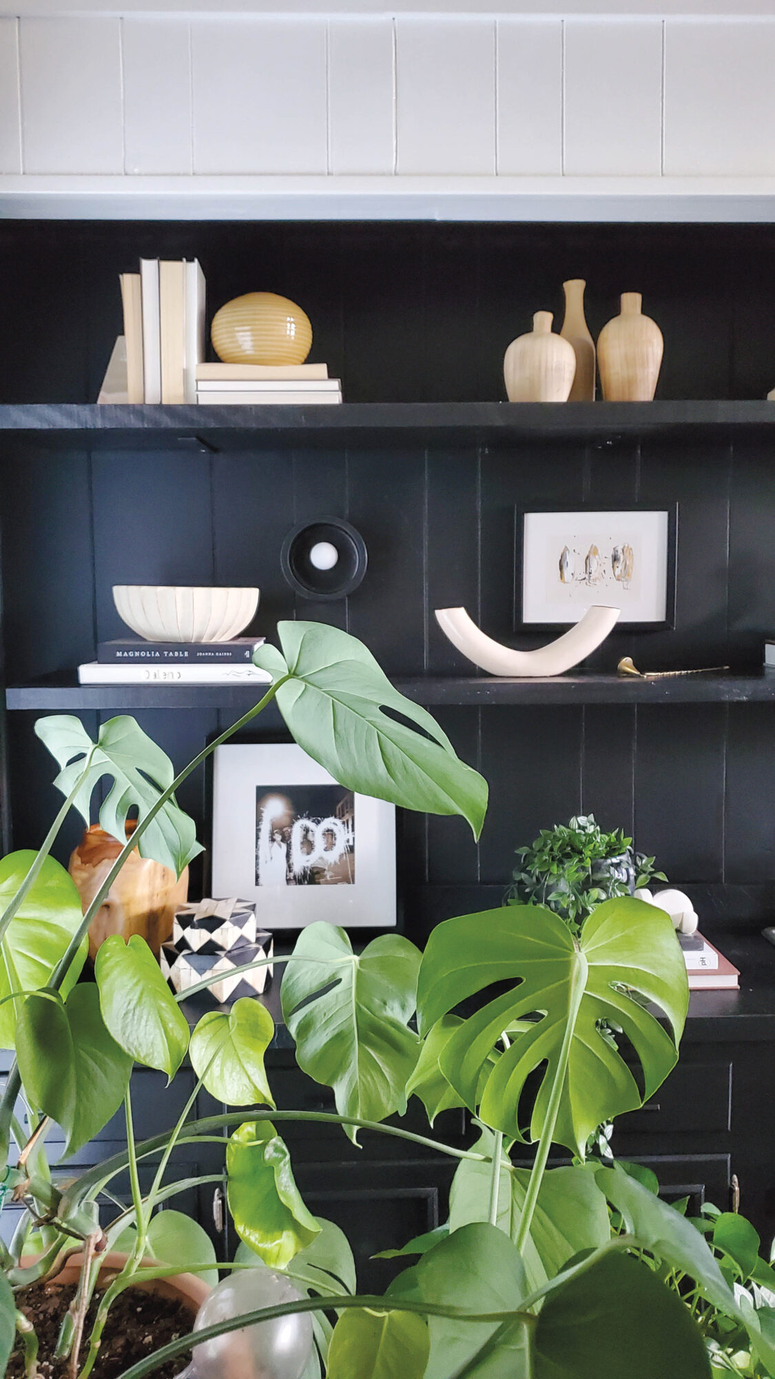 Black bookshelf with pale objects and green plant
