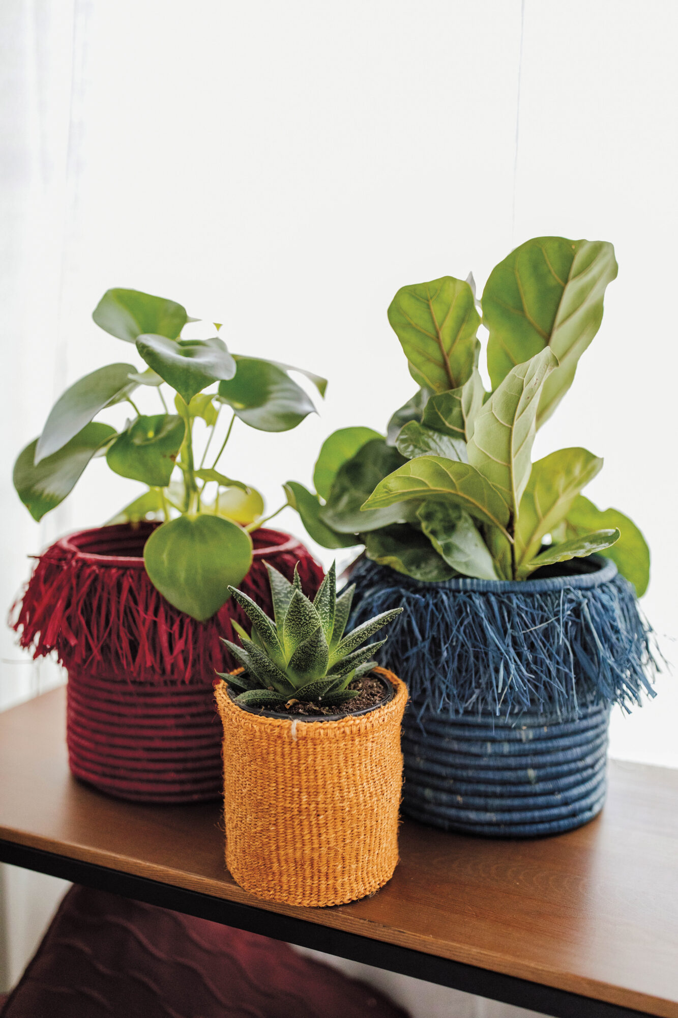 Three soften woven plant bots with plants