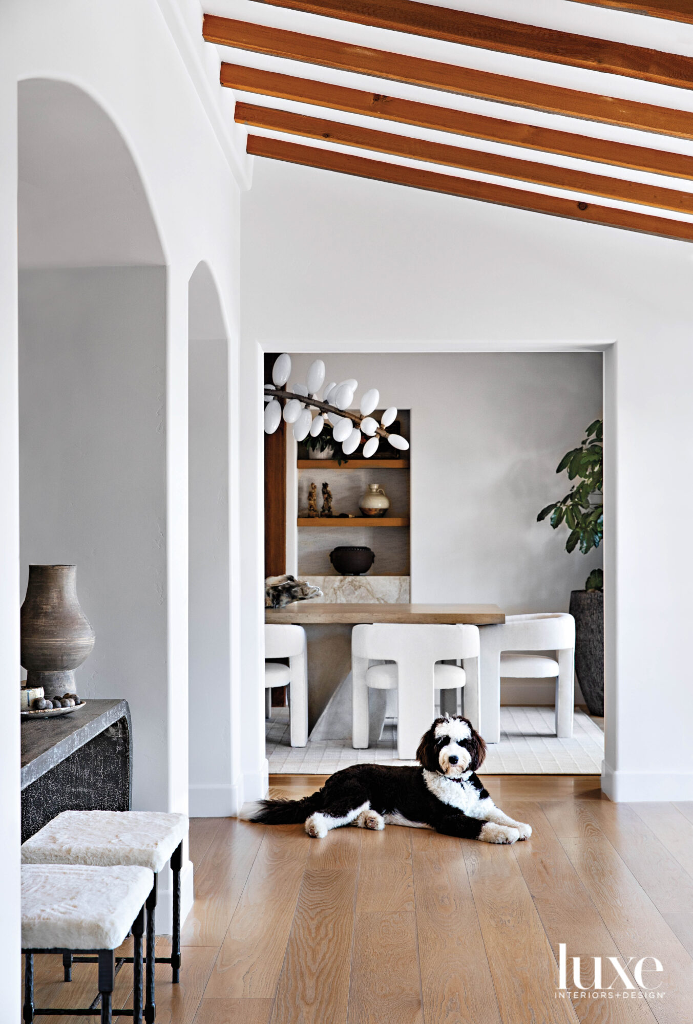Entryway with dog resting in front of dining room