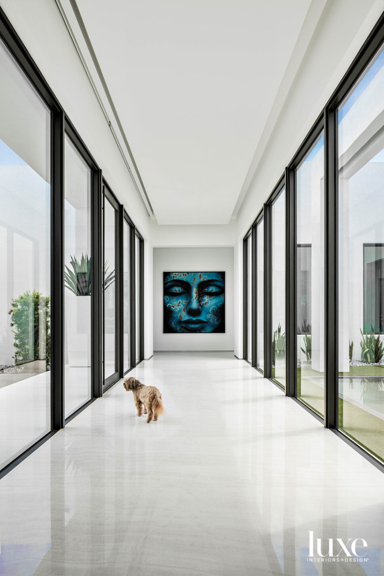 hallway with white porcelain flooring, glass walls, a dog and a blue wall artwork