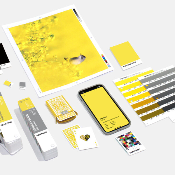 Pantone Selects Two Hues For Their Annual Color Of The Year Announcement