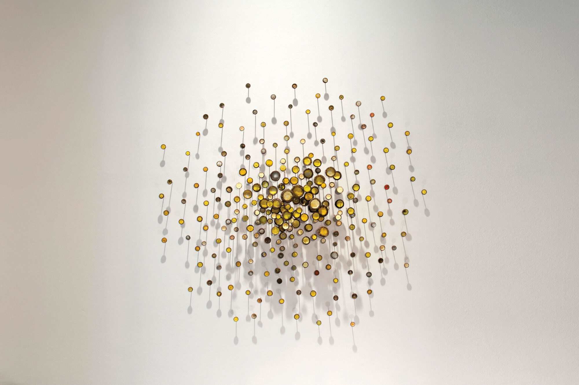 wall installation of circular objects