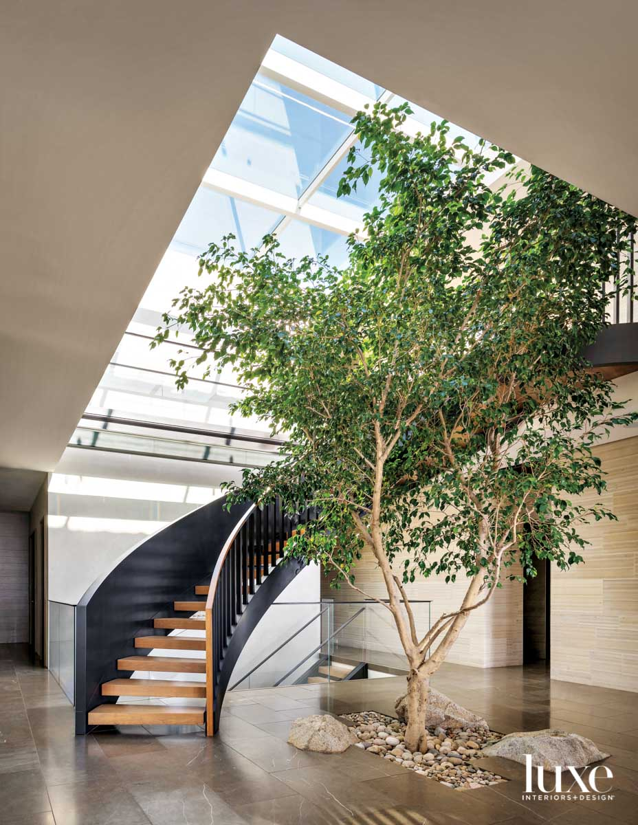 A tree grows inside the...