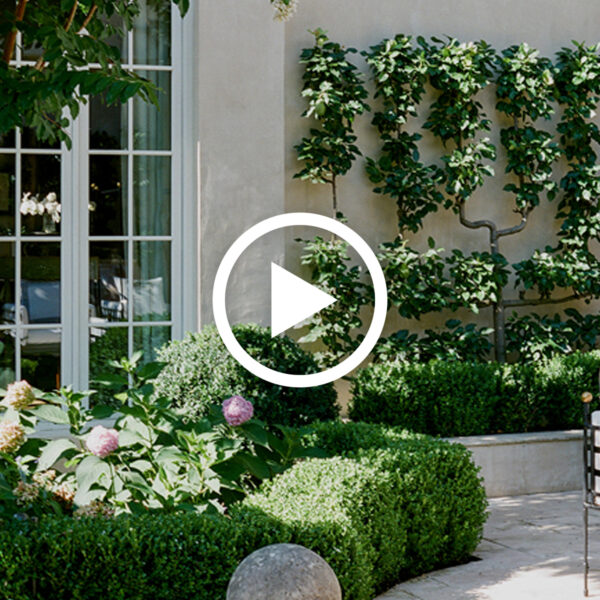 Garden Tour With Robin Rains & Anne Daigh