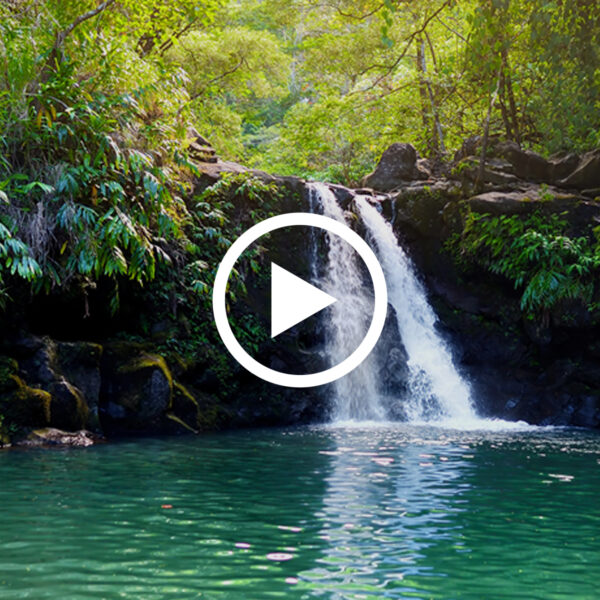 Location Luxe: Maui