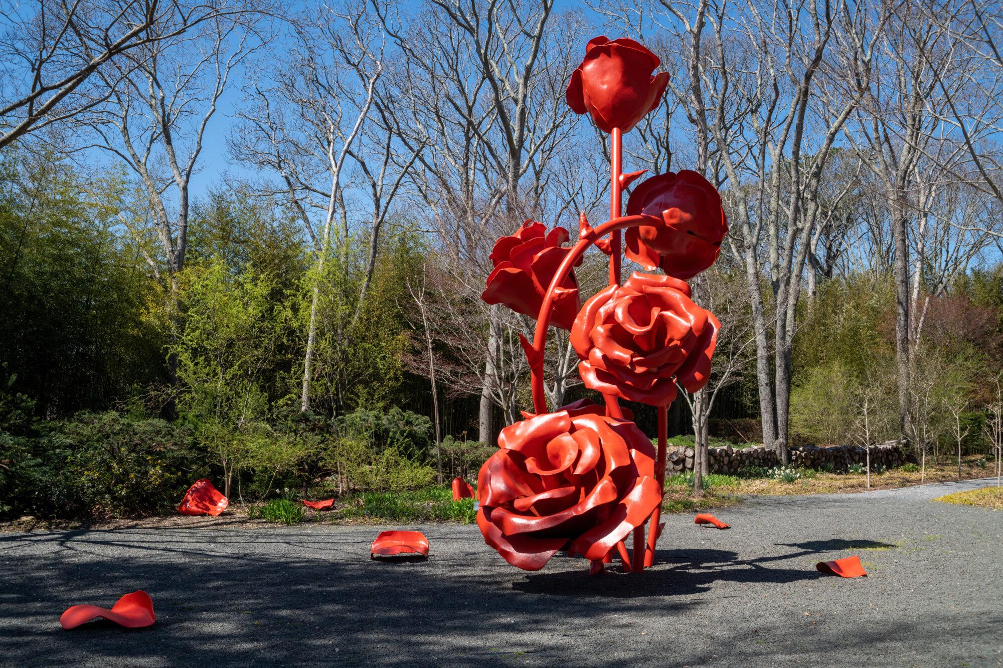 Red Rose Art Installation