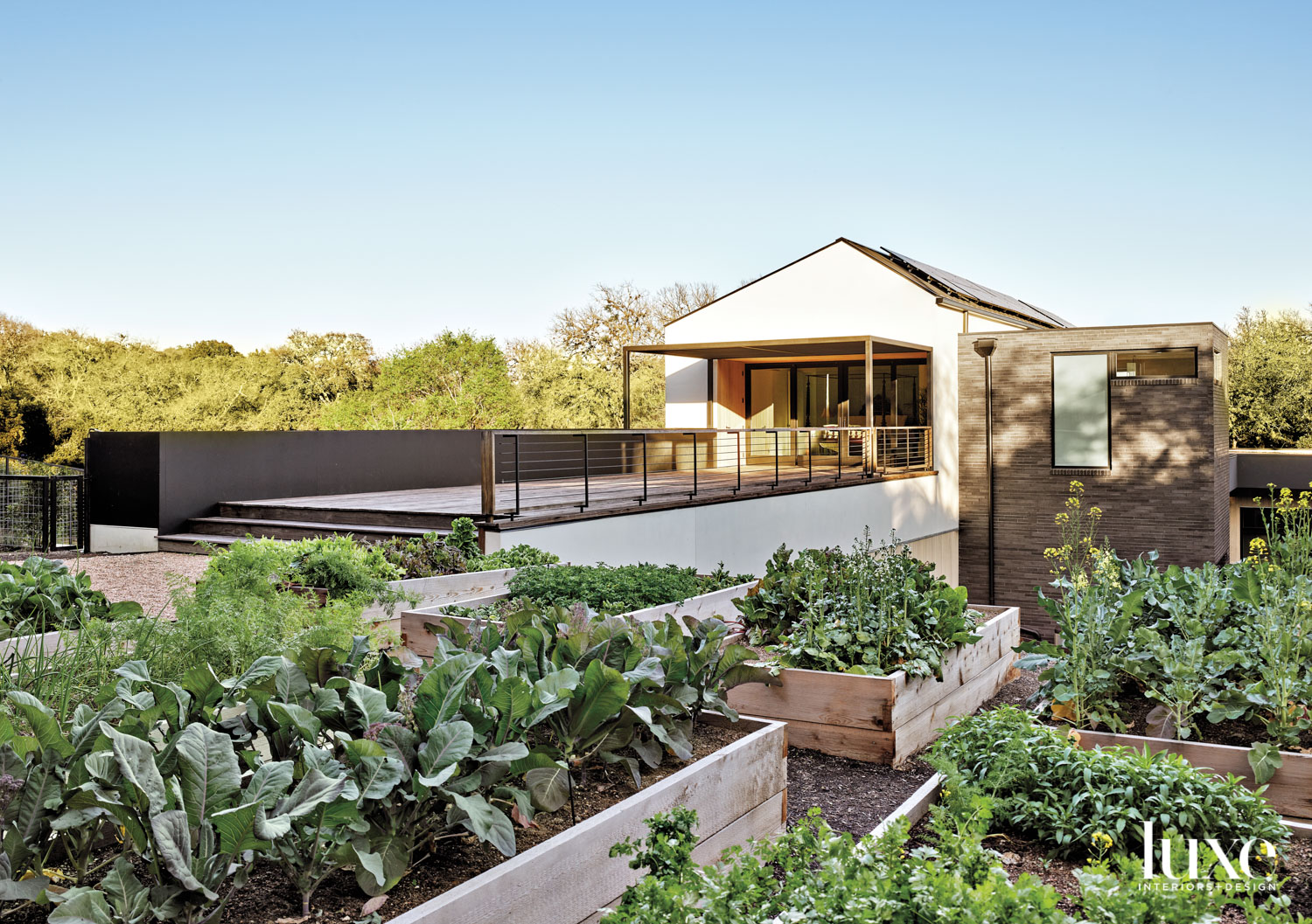 Raised beds for organic fruits...